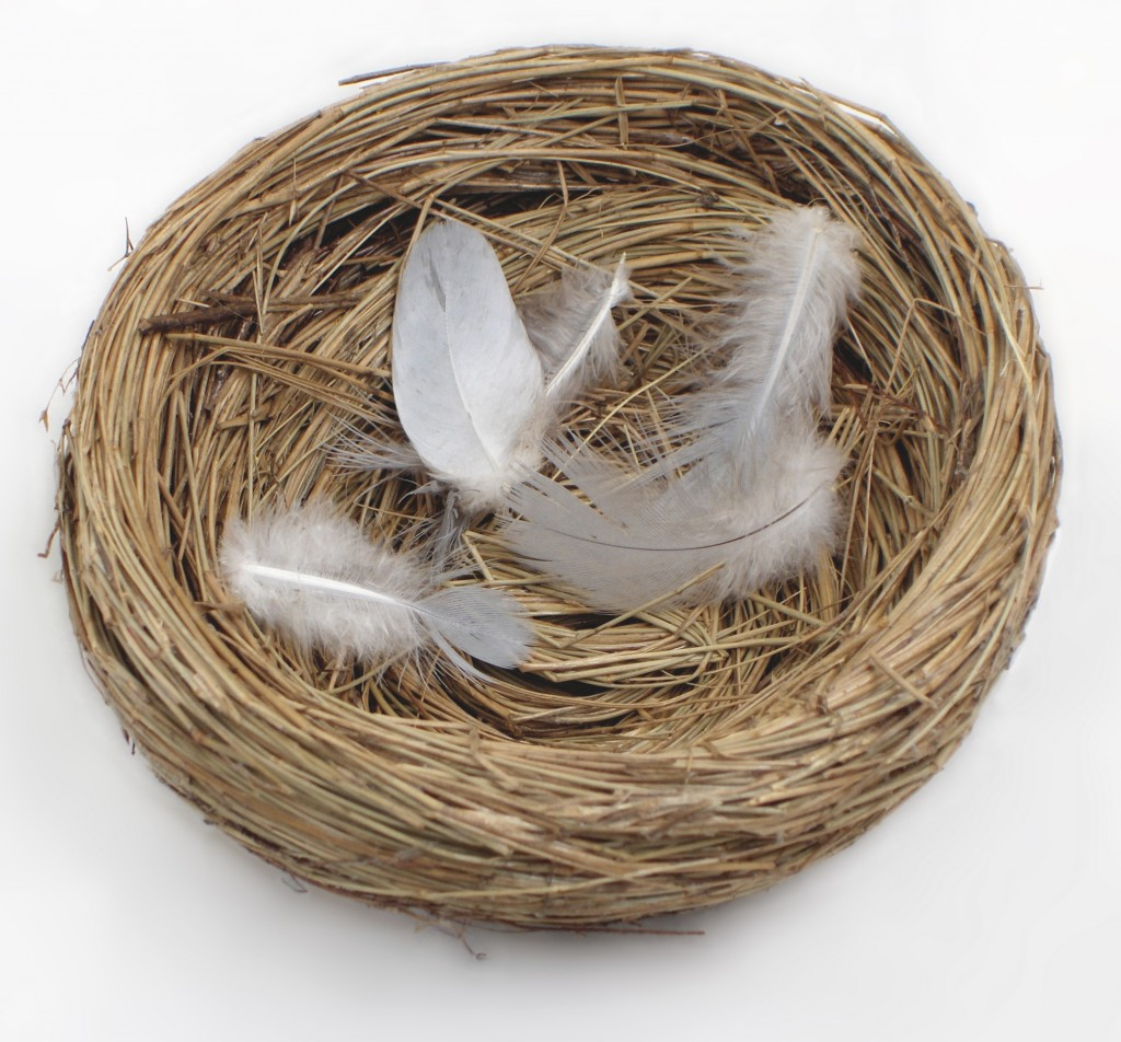 Empty Nest Syndrome: How to Deal